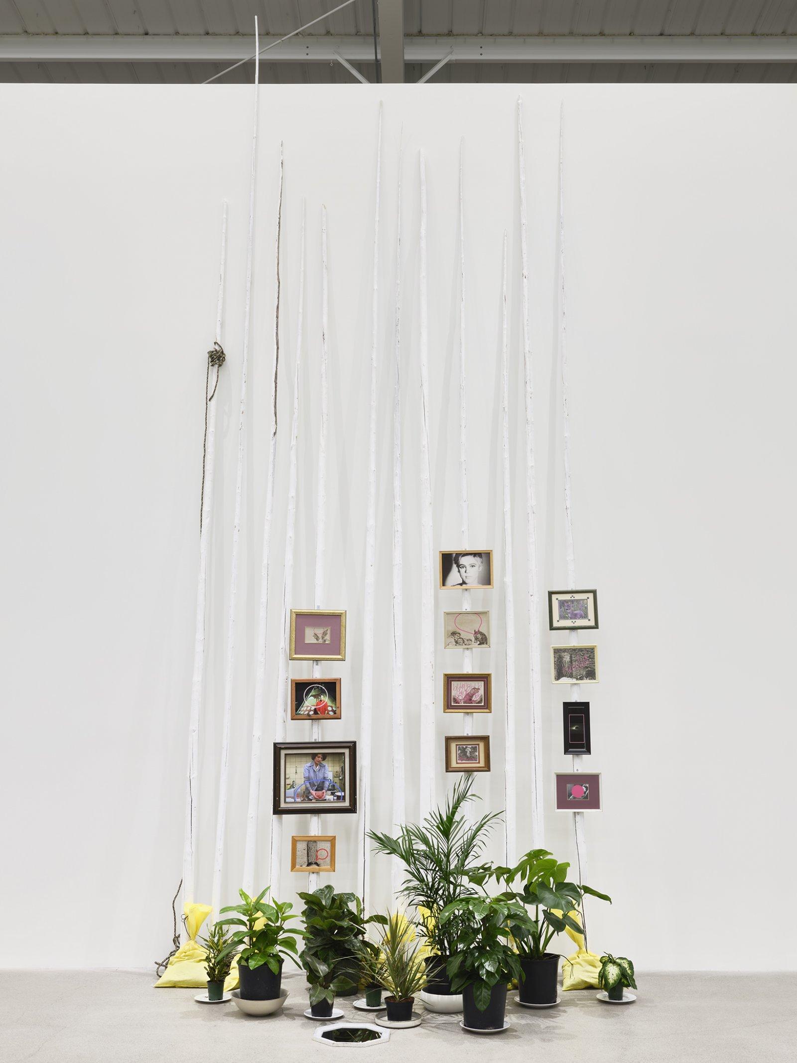 Duane Linklater, action at a distance, 2020, teepee poles, paint, nylon rope, plants, plates, ceramics, sandbags, frames, 12 digital prints, mirror, 233 x 102 x 66 in. (592 x 259 x 168 cm)