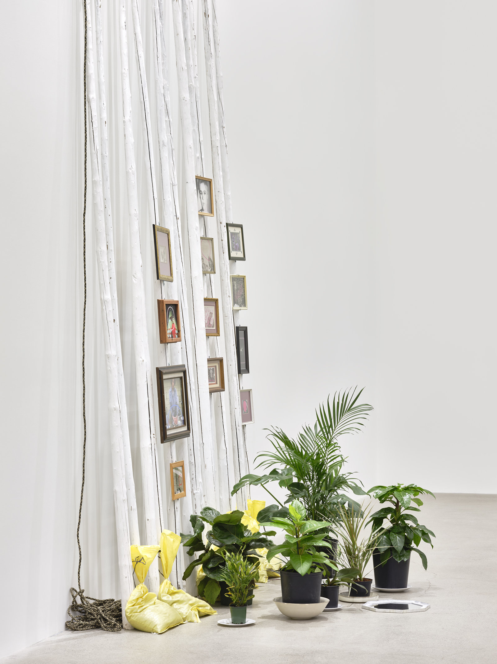 Duane Linklater, action at a distance (detail), 2020, teepee poles, paint, nylon rope, plants, plates, ceramics, sandbags, frames, 12 digital prints, mirror, 233 x 102 x 66 in. (592 x 259 x 168 cm) by Duane Linklater