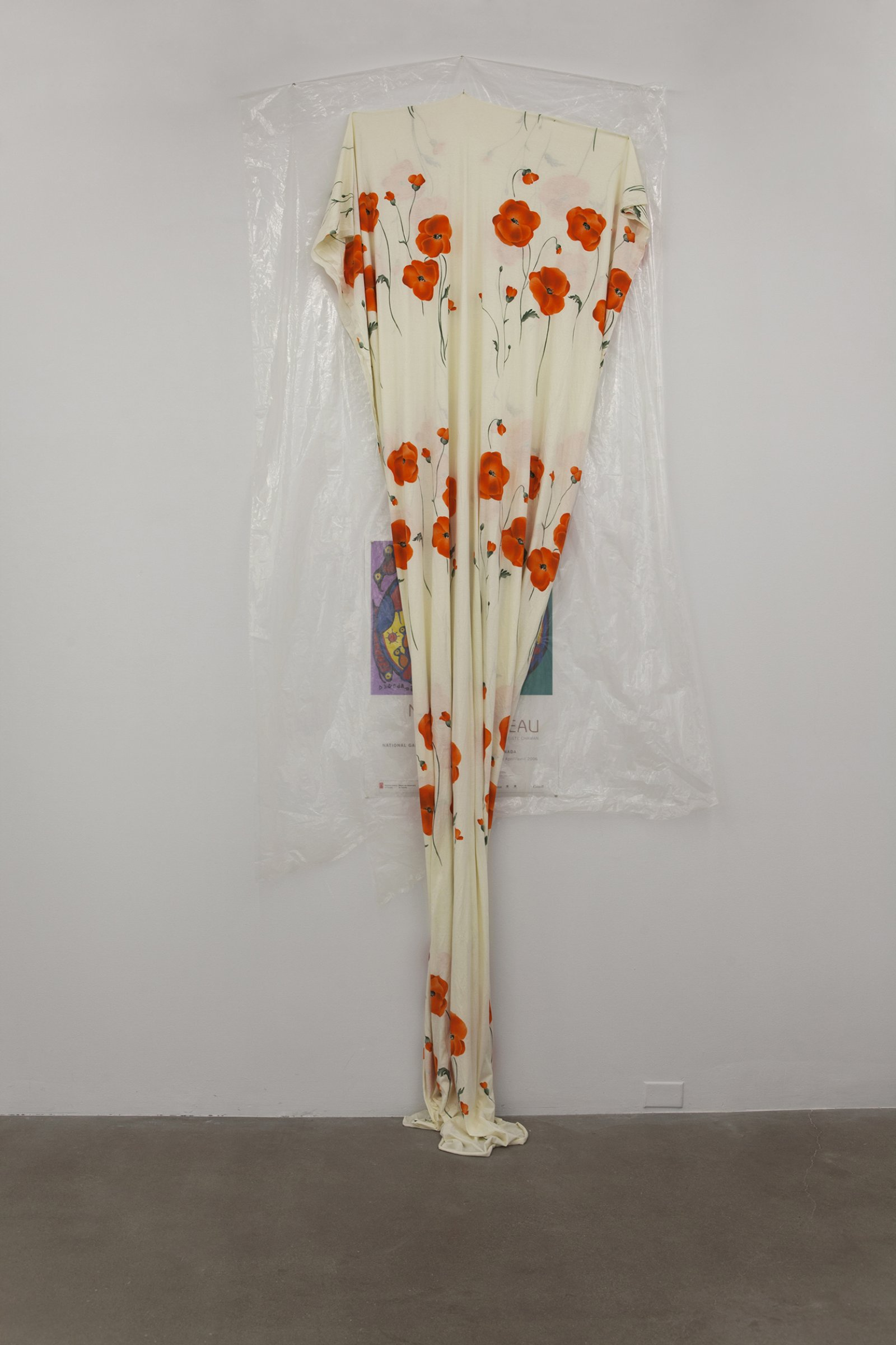Duane Linklater,body,2016, plastic sheeting, cotton cloth, nails, thumb tacks, paper poster from National Gallery of Canada, Ottawa, dimensions variable