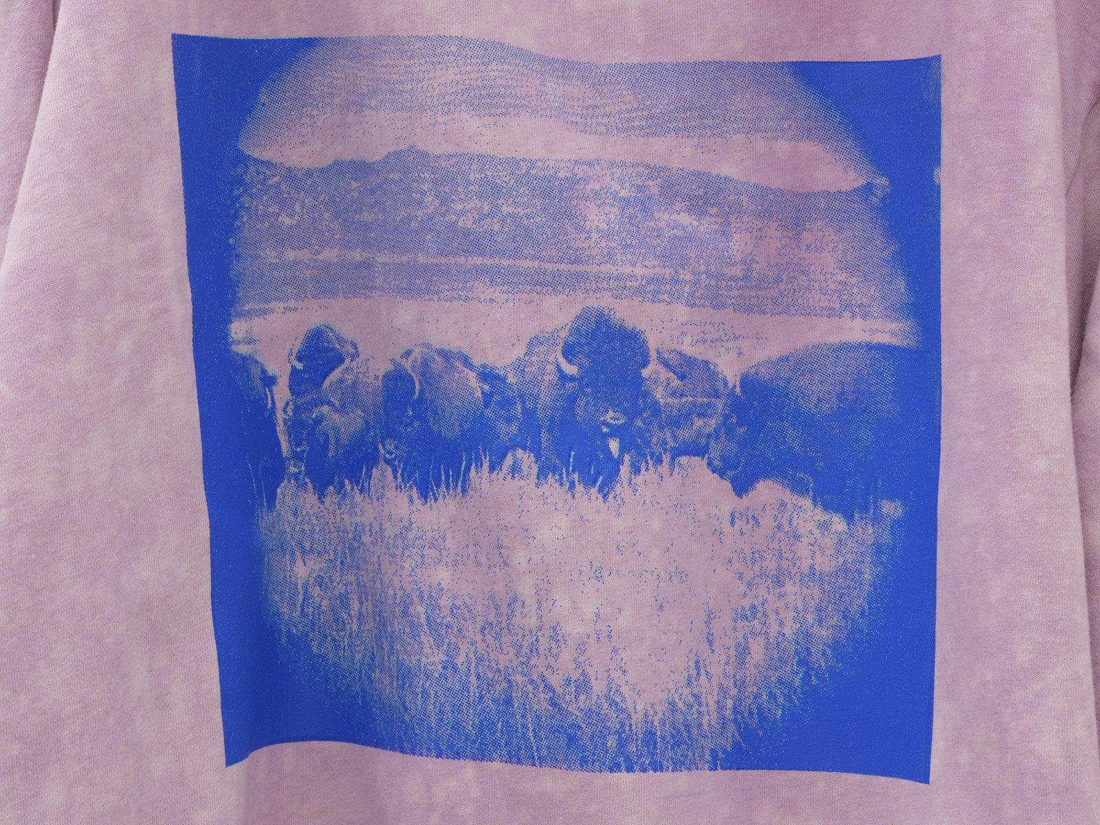 Duane Linklater, silentstar, delicacy (detail), 2020, handmade hoodie, cochineal dye, silkscreen, nails, 56 x 20 x 5 in. (142 x 51 x 13 cm)