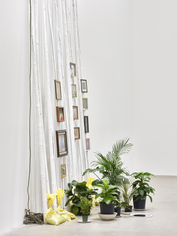 Duane Linklater, action at a distance (detail), 2020, teepee poles, paint, nylon rope, plants, plates, ceramics, sandbags, frames, 12 digital prints, mirror, 233 x 102 x 66 in. (592 x 259 x 168 cm)