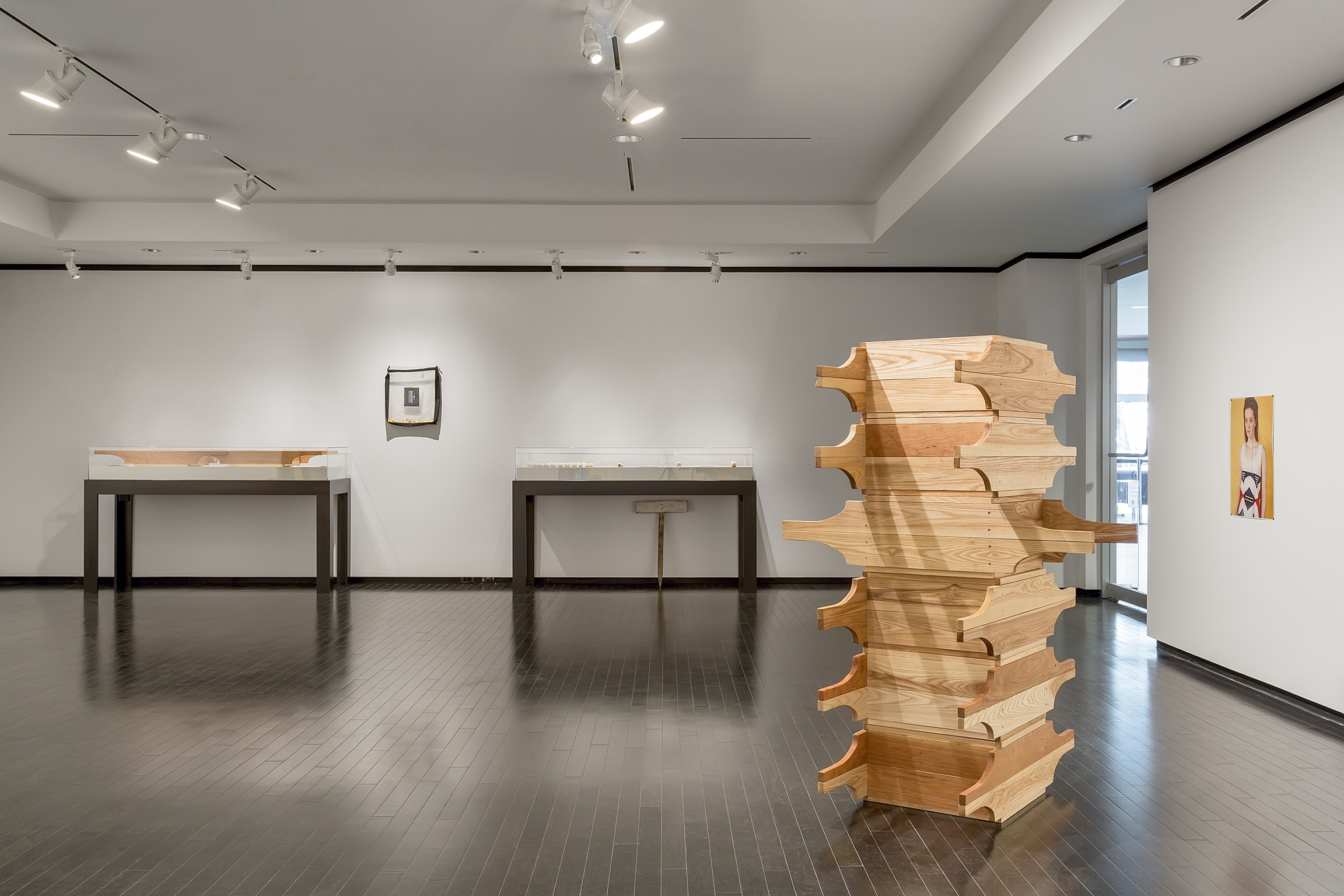 Tanya Lukin Linklater, Horse Hair Question 1, 2016, wood, hardware, screen, horse hair bundles, cotton, antler velvet, drywall, steel studs, dimensions variable. Installation view, A Parallel Excavation, Art Gallery of Alberta, Edmonton, Canada, 2016 by