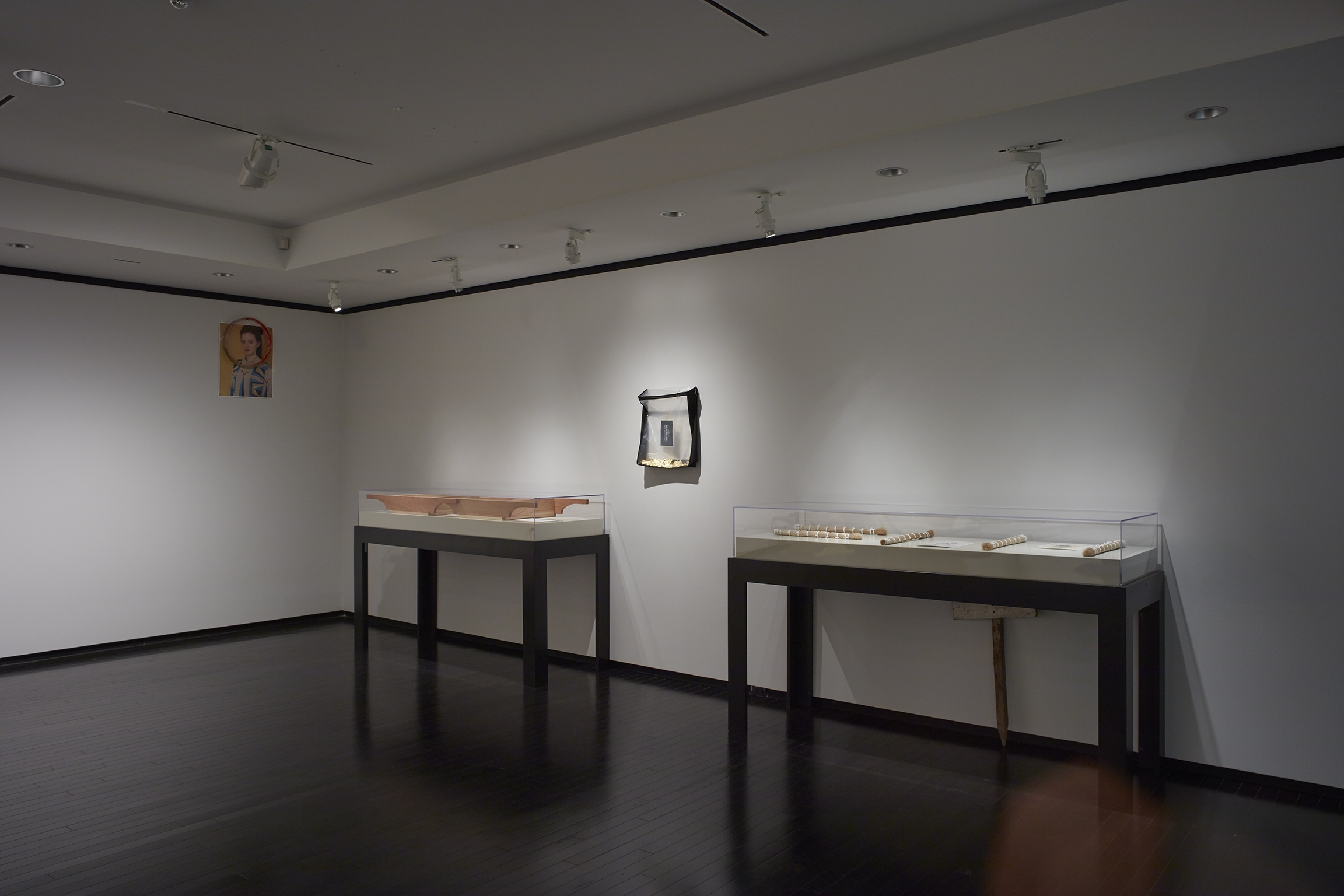 Tanya Lukin Linklater, Horse Hair Question 2, 2016, mixed media, dimensions variable. Installation view, A Parallel Excavation, Art Gallery of Alberta, Edmonton, Canada, 2016 by
