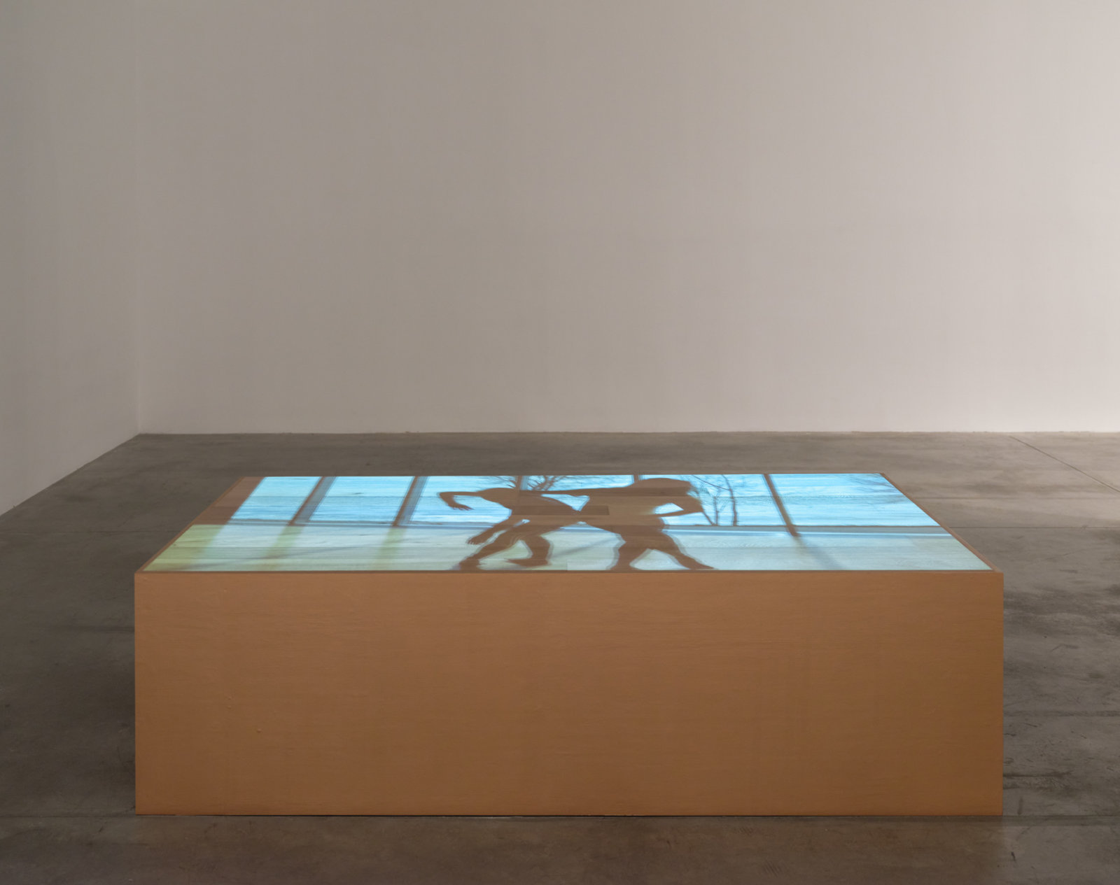 Tanya Lukin Linklater, We wear one another, 2019⁠, site-specific performance projected on wood plinth, 48 x 24 x 85 in. (122 x 61 x 216 cm), 25 minutes, 18 seconds. Installation view, Soundings, Morris and Helen Belkin Art Gallery, Vancouver, 2020