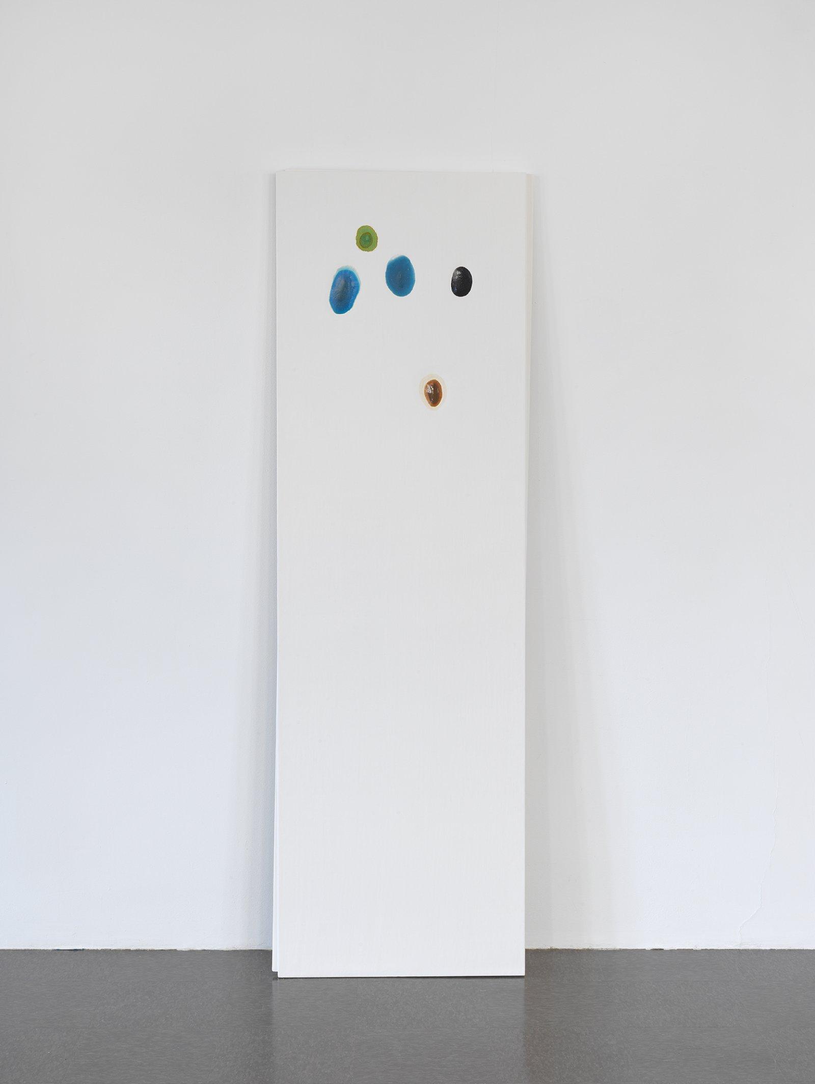 Christina Mackie, Chalk no. 2, 2014, birch, gesso, watercolour, 78 x 244 in. (198 x 620 cm) by Christina Mackie