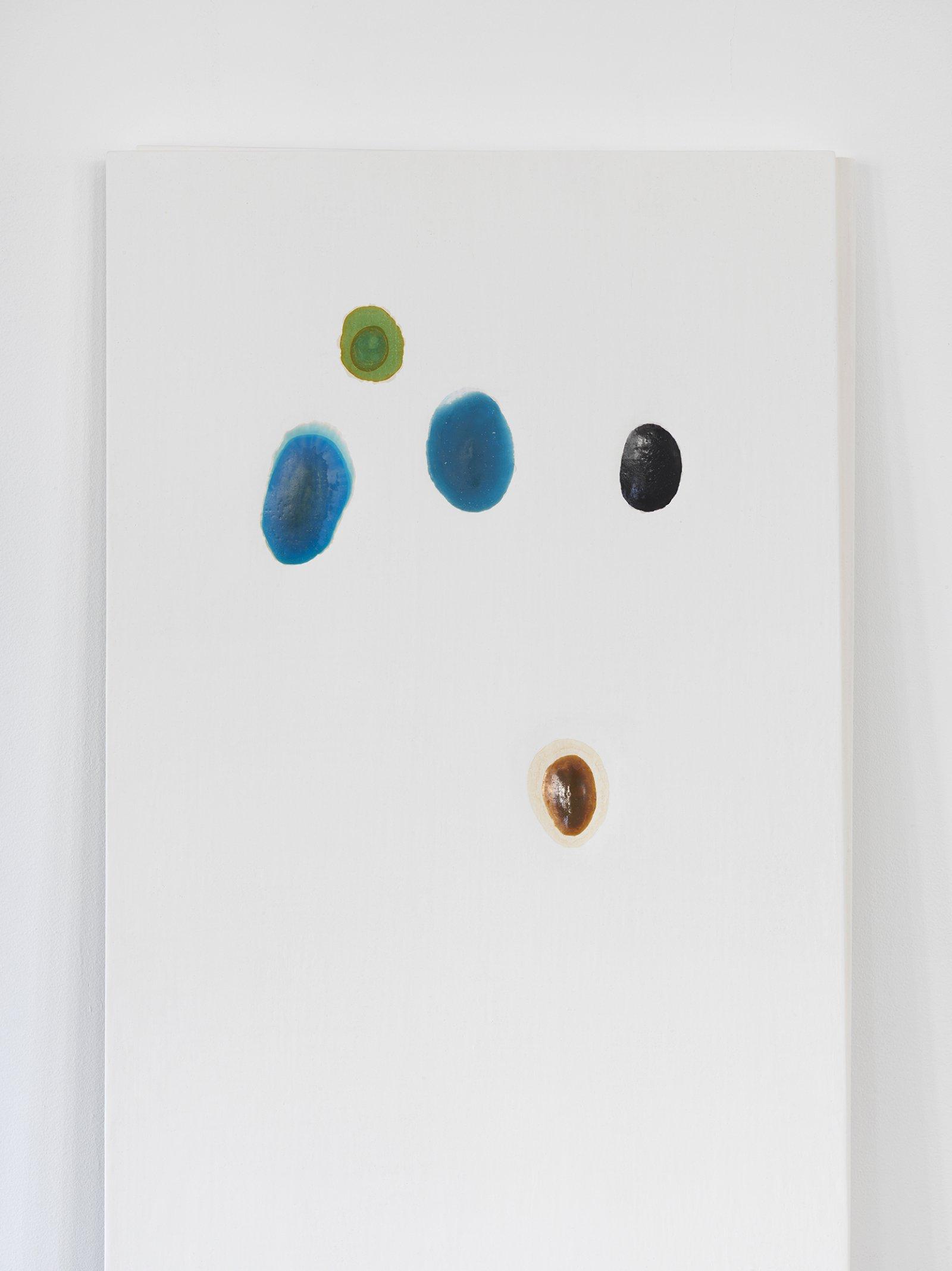 Christina Mackie, Chalk no. 2 (detail), 2014, birch, gesso, watercolour, 78 x 244 in. (198 x 620 cm) by Christina Mackie