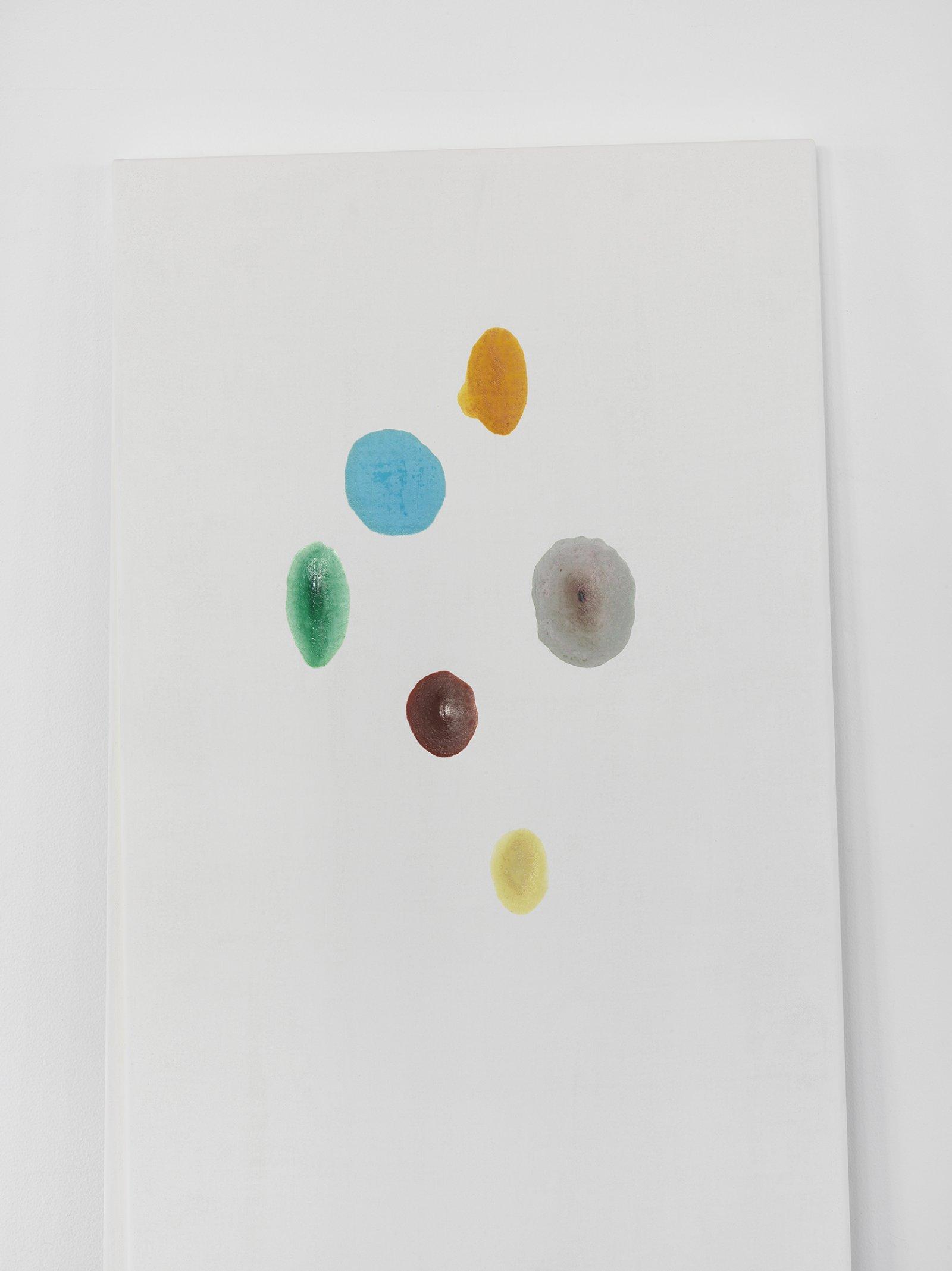 Christina Mackie, Chalk no. 3 (detail), 2014, birch, gesso, watercolour, 78 x 24 in. (198 x 62 cm) by Christina Mackie