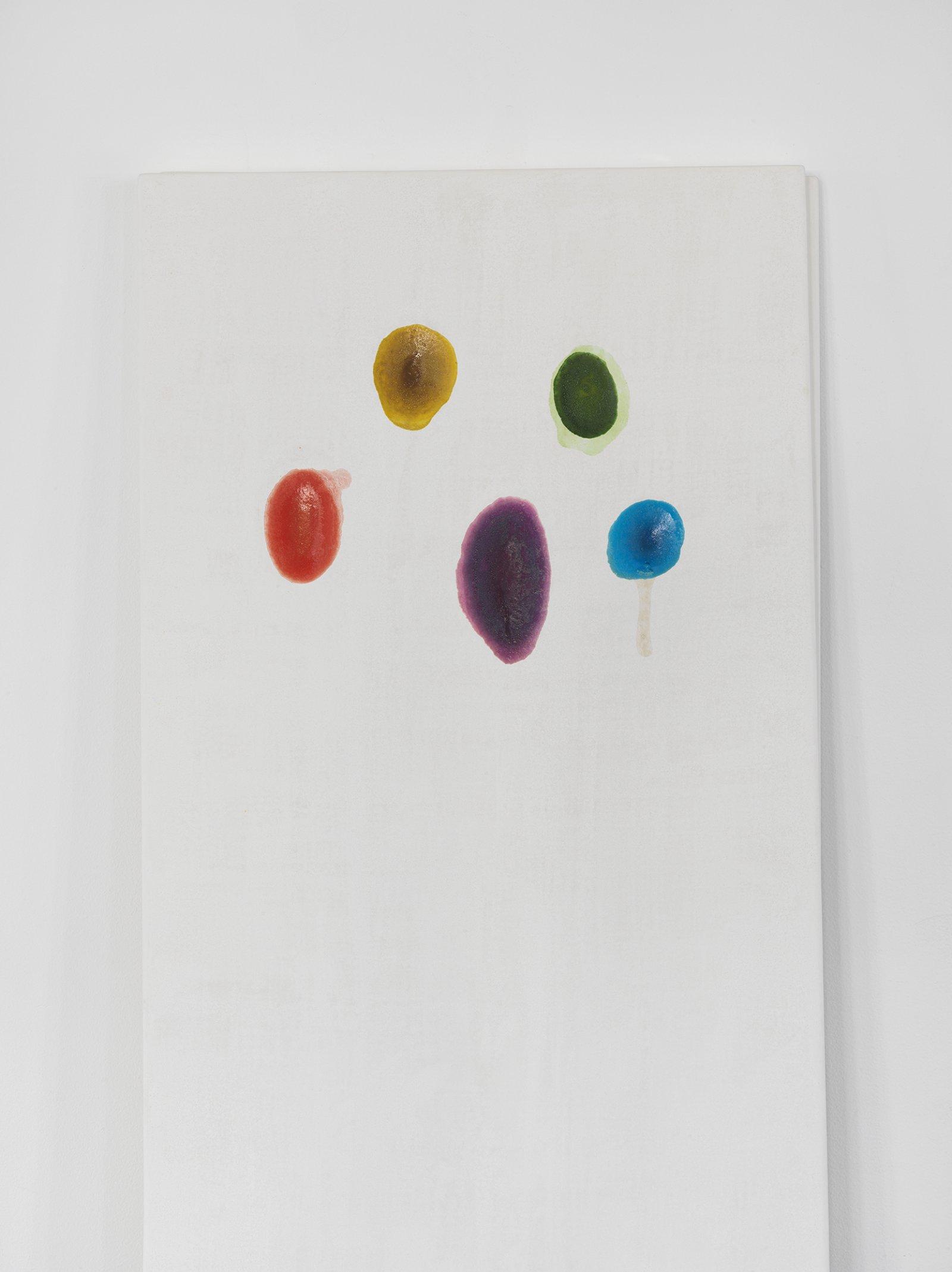 Christina Mackie, Chalk no. 4 (detail), 2014, birch, gesso, watercolour, 78 x 24 in. (198 x 62 cm) by Christina Mackie