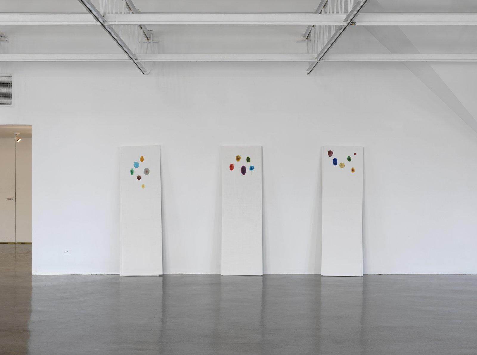 Christina Mackie, installation view, Colour drop, The Renaissance Society, Chicago, IL, 2014 by Christina Mackie