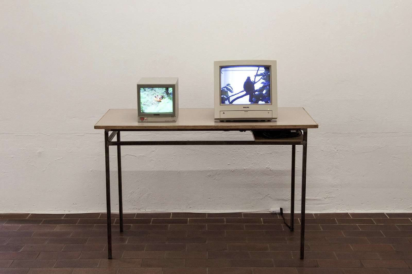 ​​​Christina Mackie, Frog and Bird, 2000, table, media players, CRT monitors, loop 19 minutes, 29 seconds. Installation view, ​And Bird, PRAXES, Berlin, 2014​​ by Christina Mackie