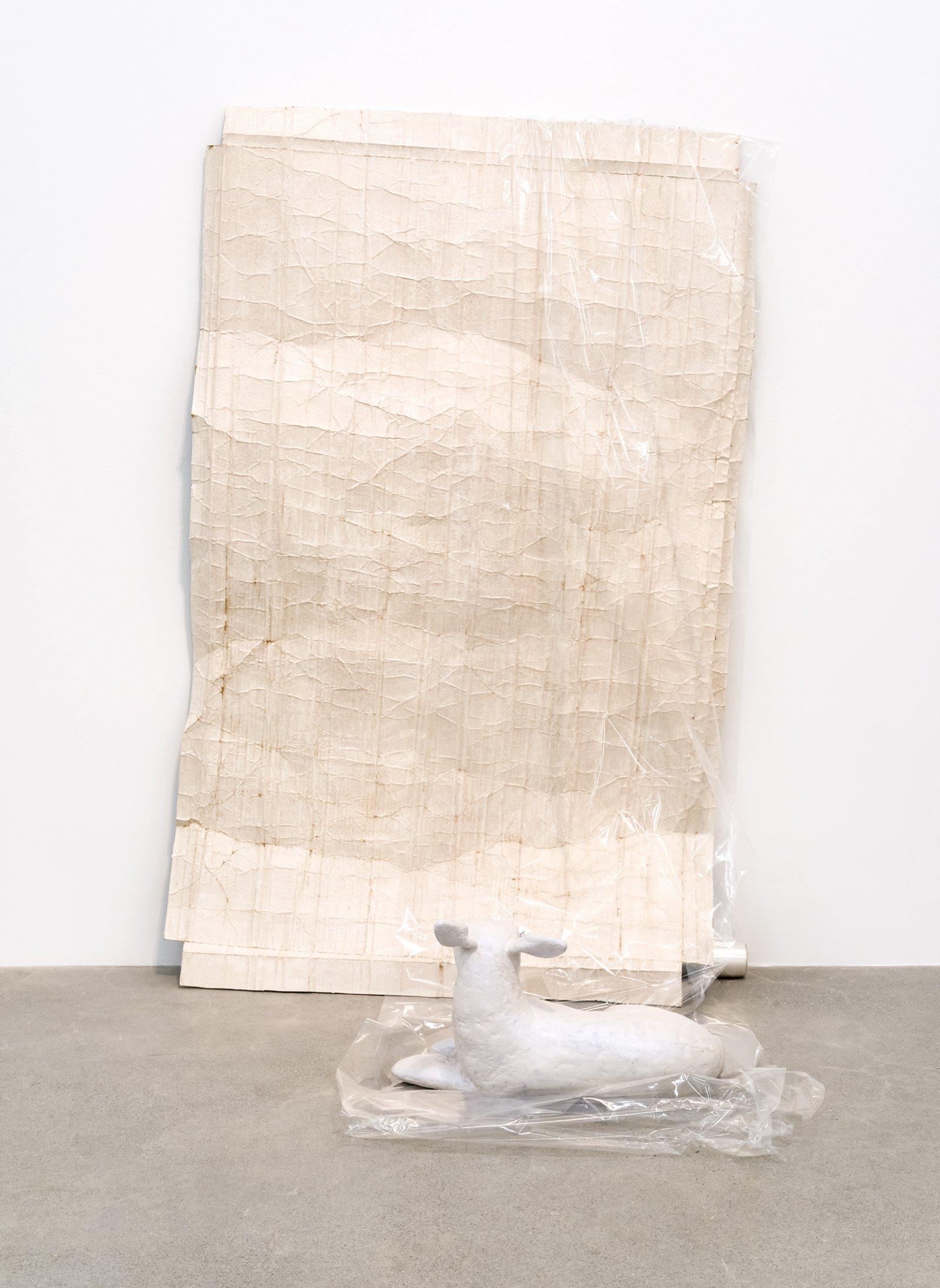 Liz Magor, Attachment, 2016, polymerized gypsum, cellophane, 65 x 43 x 39 in. (165 x 109 x 99 cm) by Liz Magor