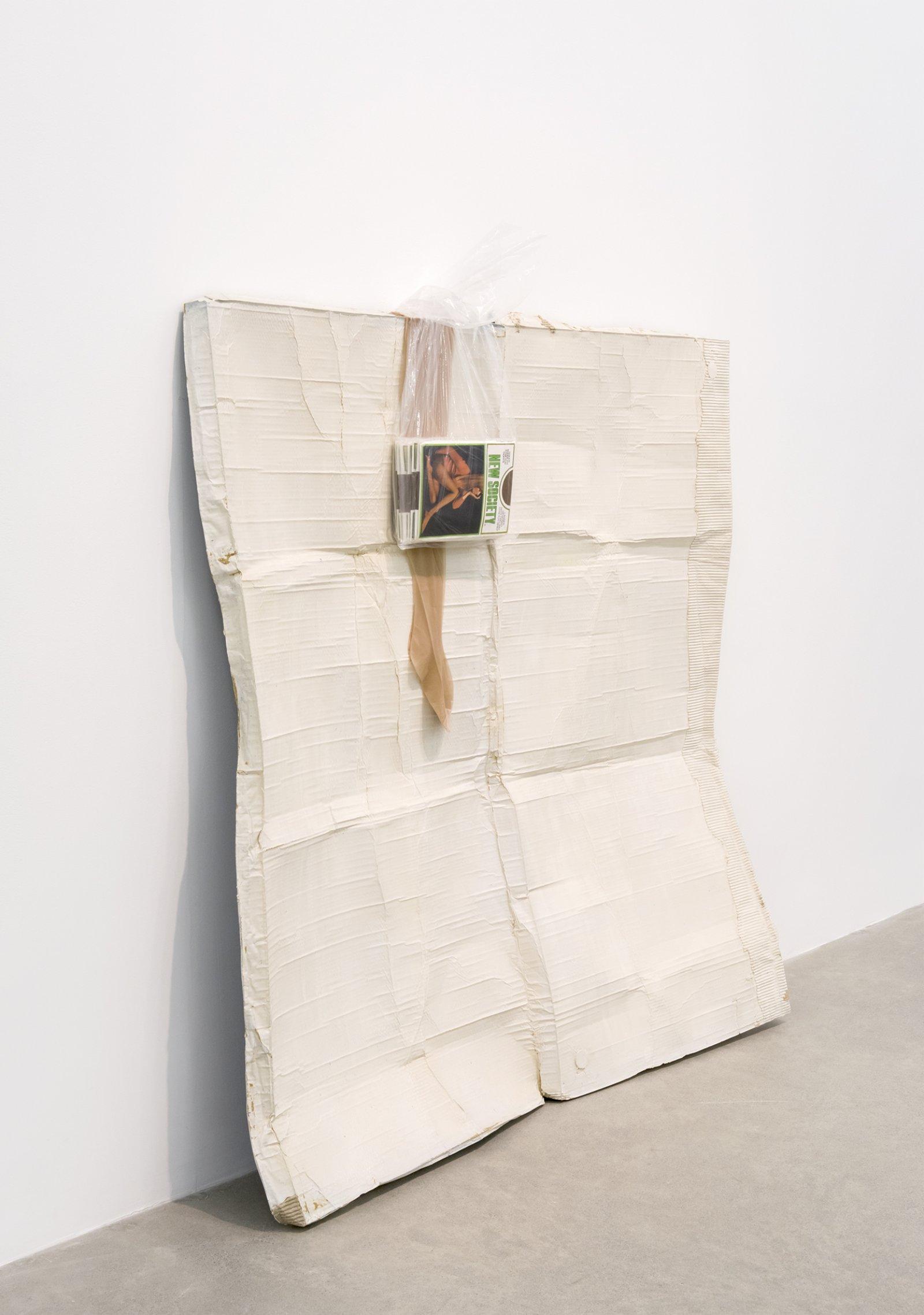 Liz Magor, New Society, 2016, polymerized gypsum, plastic bag, nylon stockings, 66 x 61 x 12 in. (168 x 155 x 30 cm) by Liz Magor