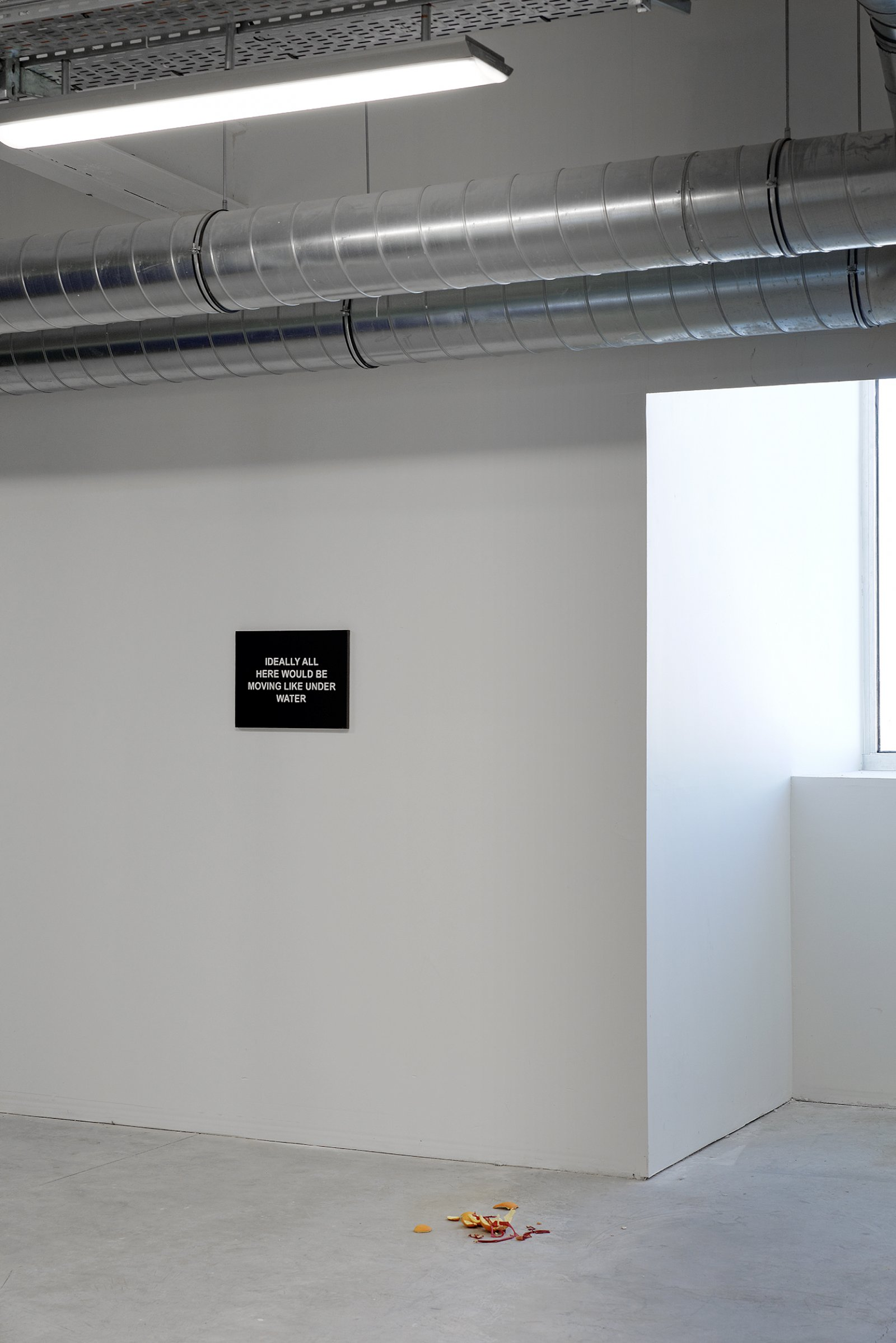 Installation view, No Fear, No Shame, No Confusion, Triangle France, Marseilles, 2013 by Liz Magor