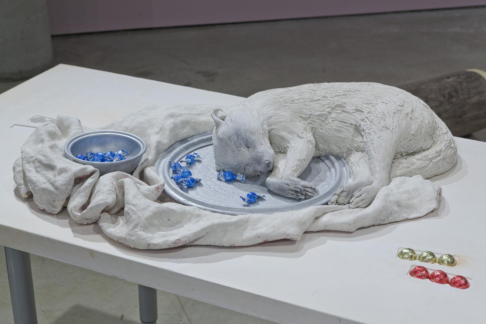 Liz Magor, Racoon, 2008, polymerized gypsum, 5 x 21 x 33 in. (13 x 54 x 84 cm) by Liz Magor