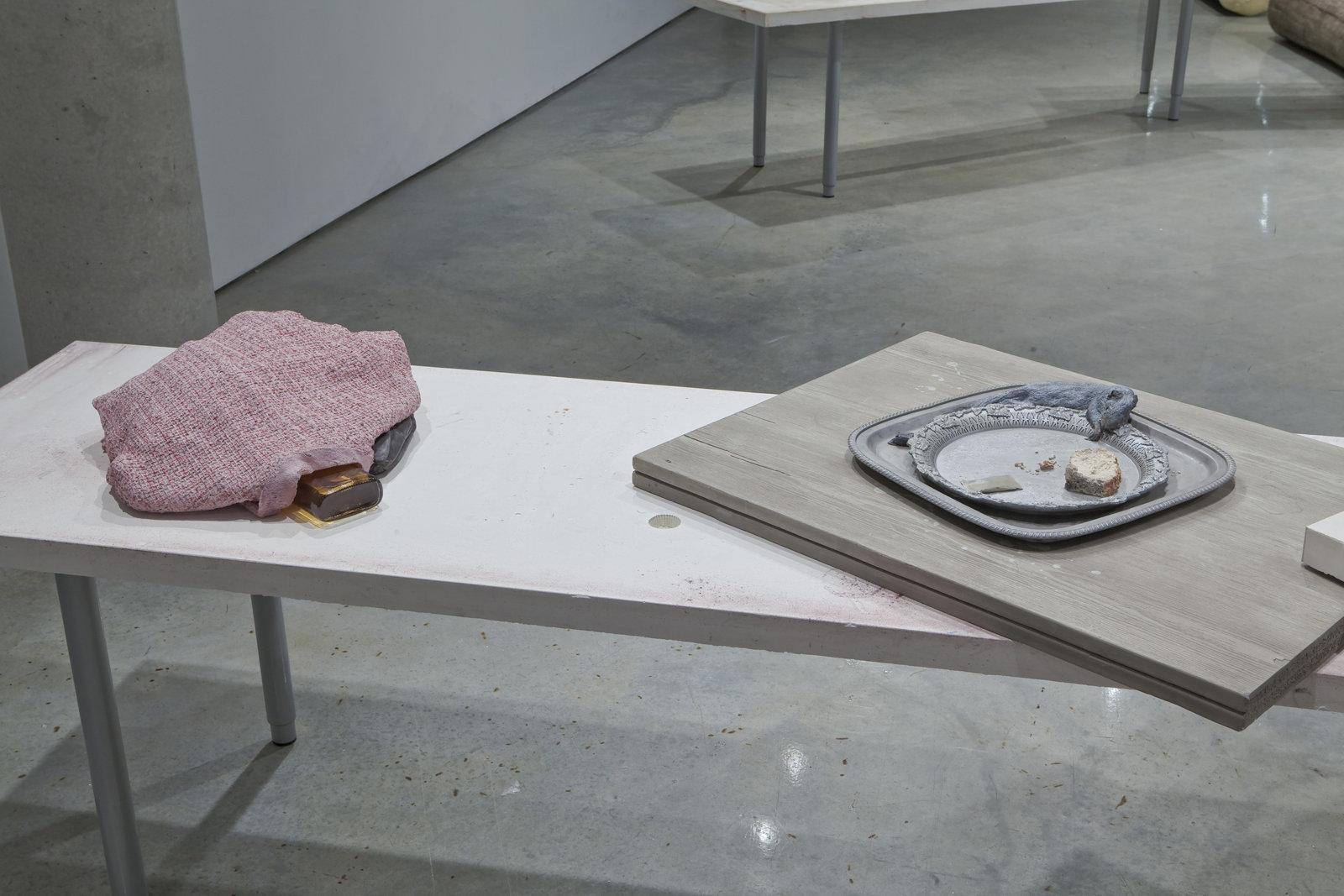 Liz Magor, installation view, Storage Facilities, Doris McCarthy Gallery, Scarborough, ON, 2009 by Liz Magor