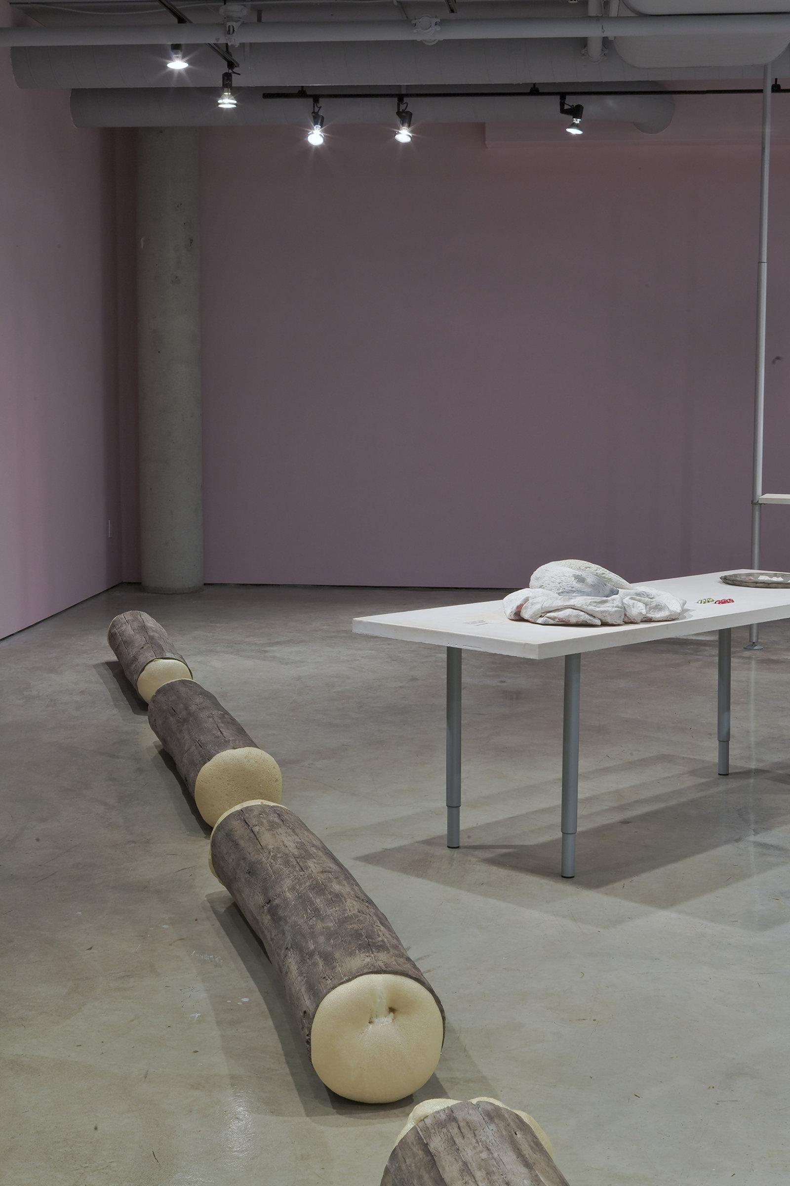 Liz Magor, Molly's Reach, 2008, polymerized gypsum and polyurethane foam, 17 x 14 x 360 in. (43 x 36 x 914 cm) by Liz Magor