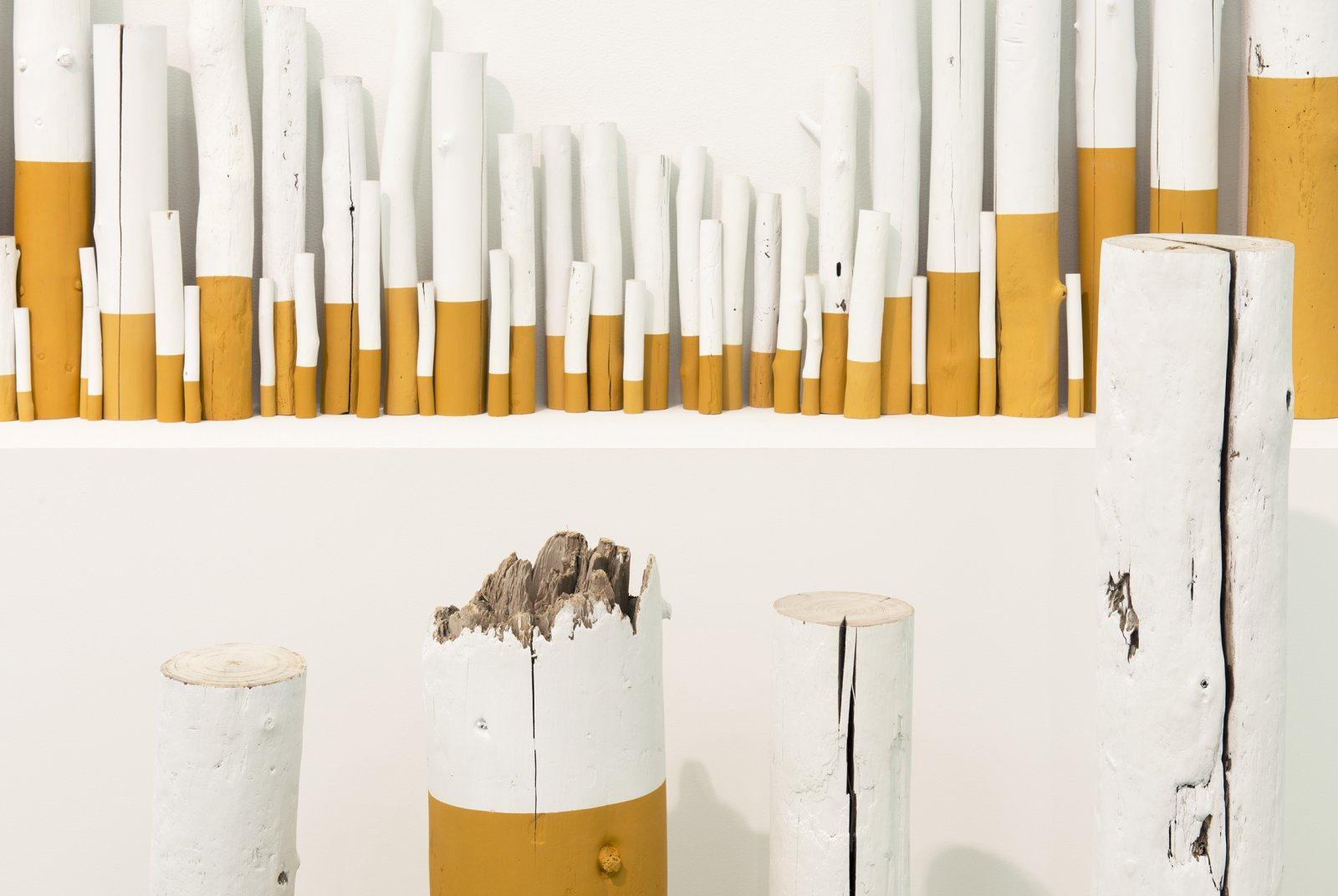 Liz Magor, The Rules (detail), 2012, wood, paint, 38 x 180 x 10 in. (97 x 457 x 25 cm) by Liz Magor