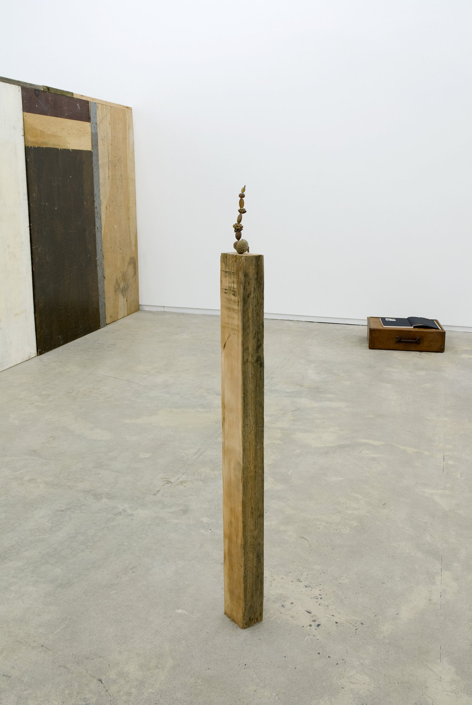 Gareth Moore, Judd also planted these trees from Uncertain Pilgrimage, 2006-2009, nectarine pit, apple seed, Rothko pecan, Judd cone, unidentified seeds and nuts, found wood, 47 x 4 x 3 in. (118 x 9 x 6 cm) by Ashes Withyman