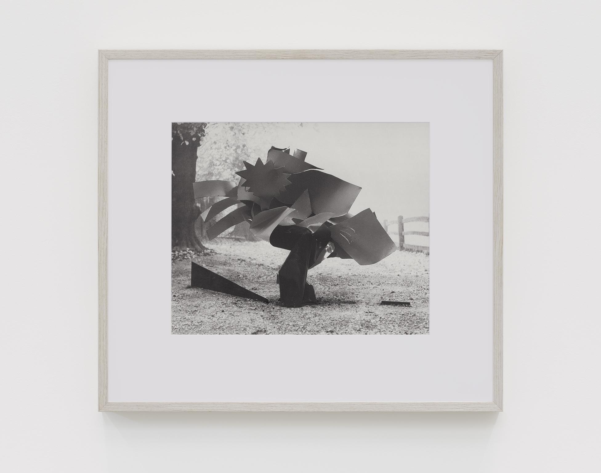 Damian Moppett, Over Caro, 2019, inkjet print, 23 x 25 in. (57 x 63 cm) by