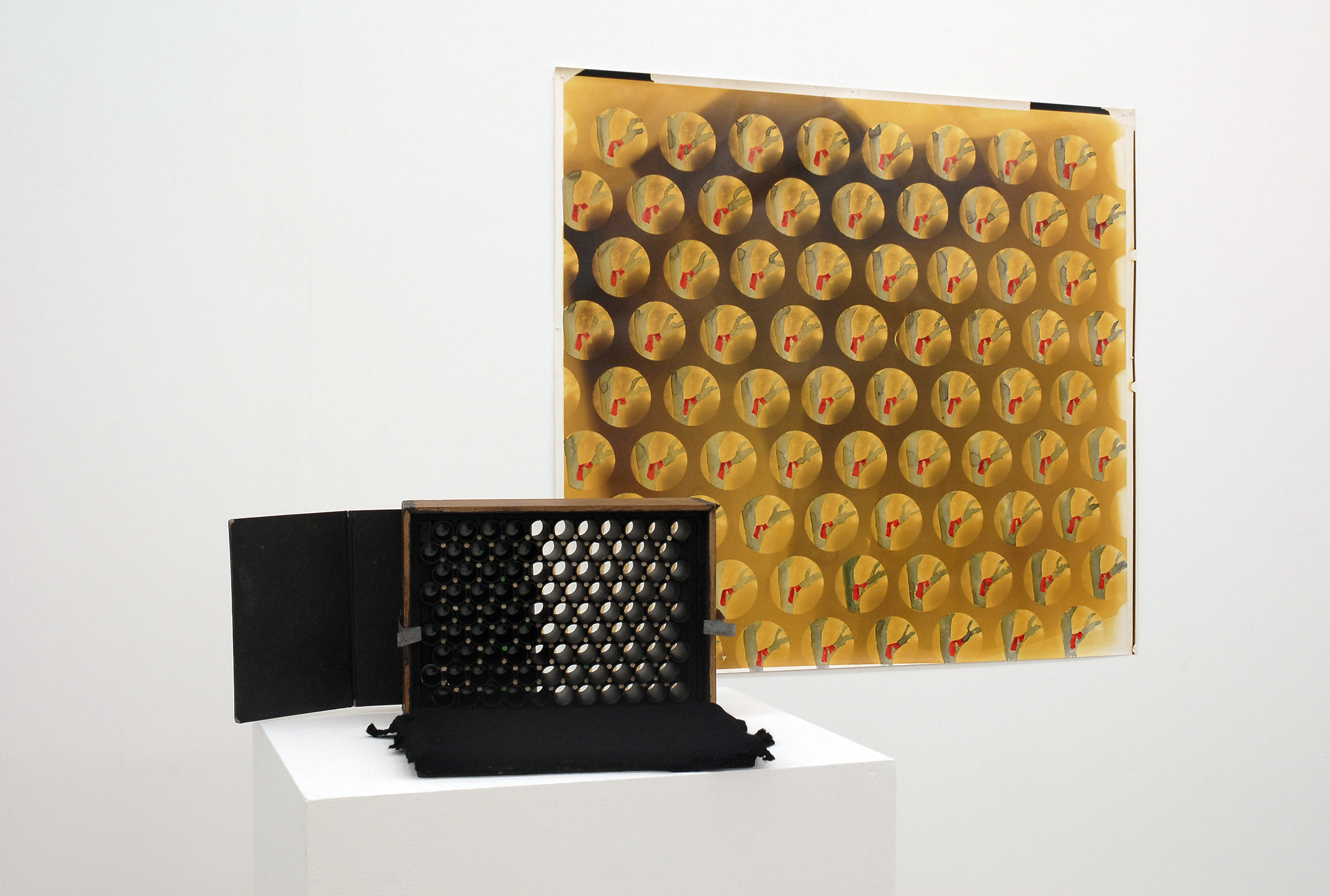 Jerry Pethick, Array Camera, 1988, Harvest Moon, 1988–1993, mixed media, dimensions variable by