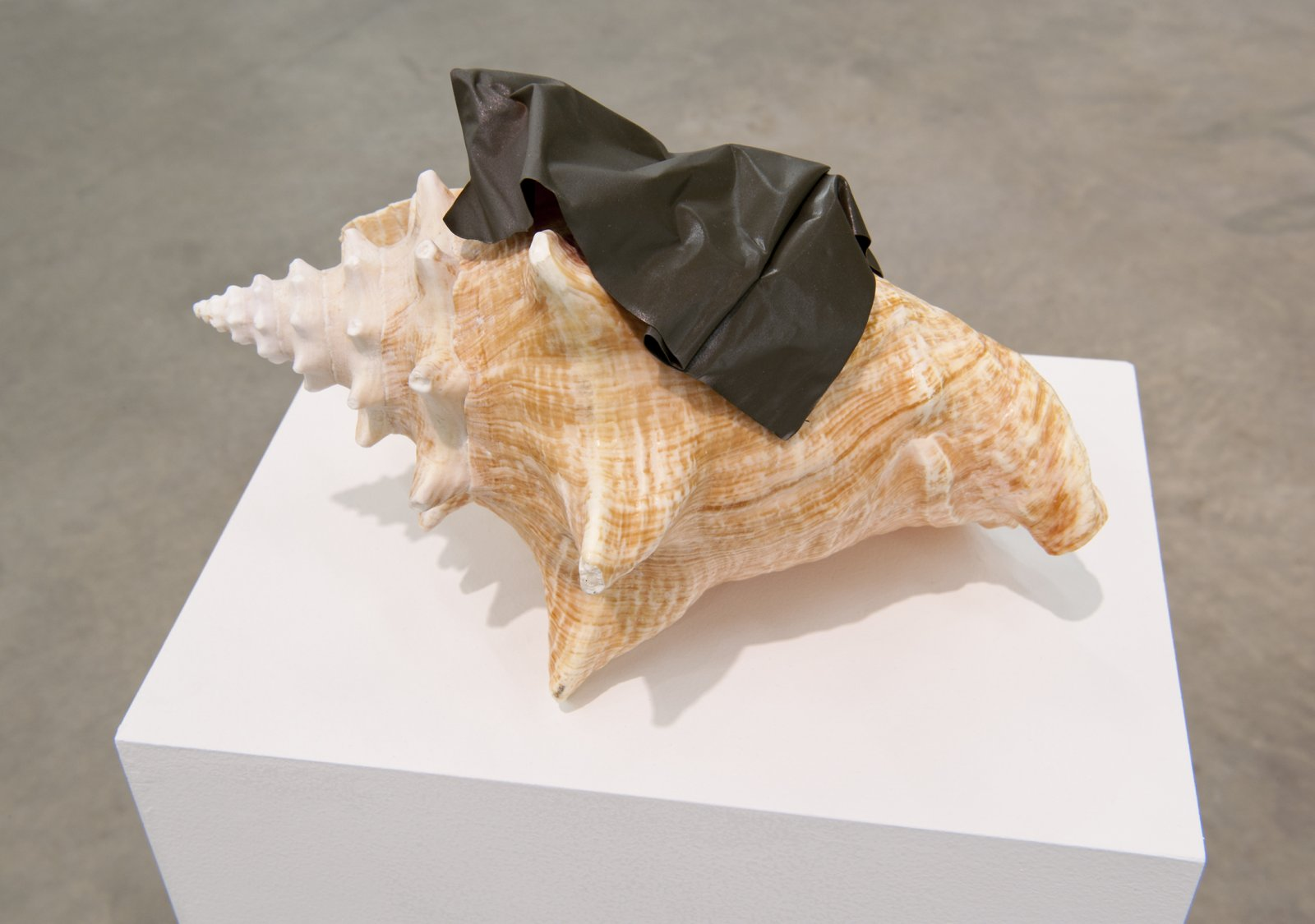 Judy Radul, Object Analysis Spectator Poem (Conch), 2012, painted copper, conch, colour photograph, 40 x 11 x 10 in. (102 x 28 x 25 cm) by Judy Radul