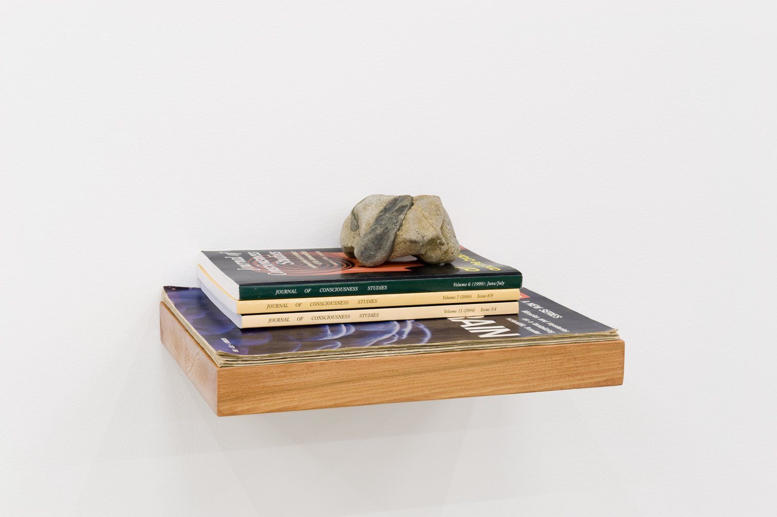 Judy Radul, The Brain Display (detail), 2010, mirror, wood, 5 stones, plastic book holder, Life magazines, doll, 67 x 40 x 80 in. (170 x 102 x 203 cm) by Judy Radul