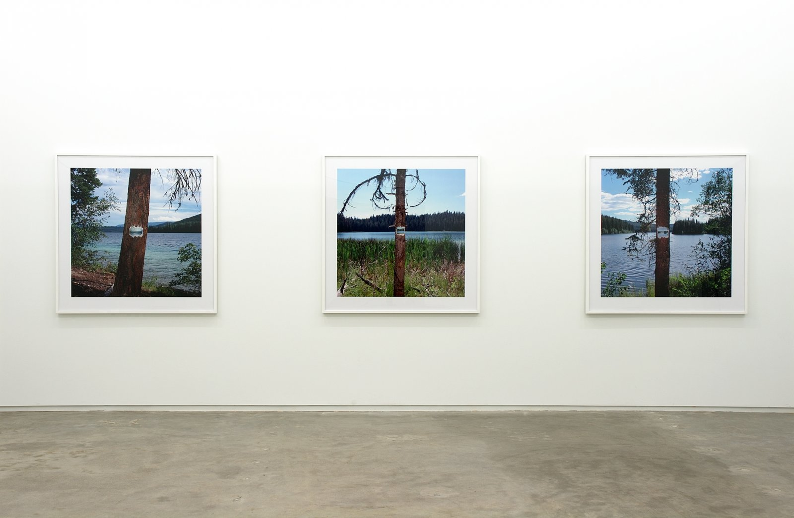 ​Kevin Schmidt, installation view, Catriona Jeffries, Vancouver, 2006 by Kevin Schmidt