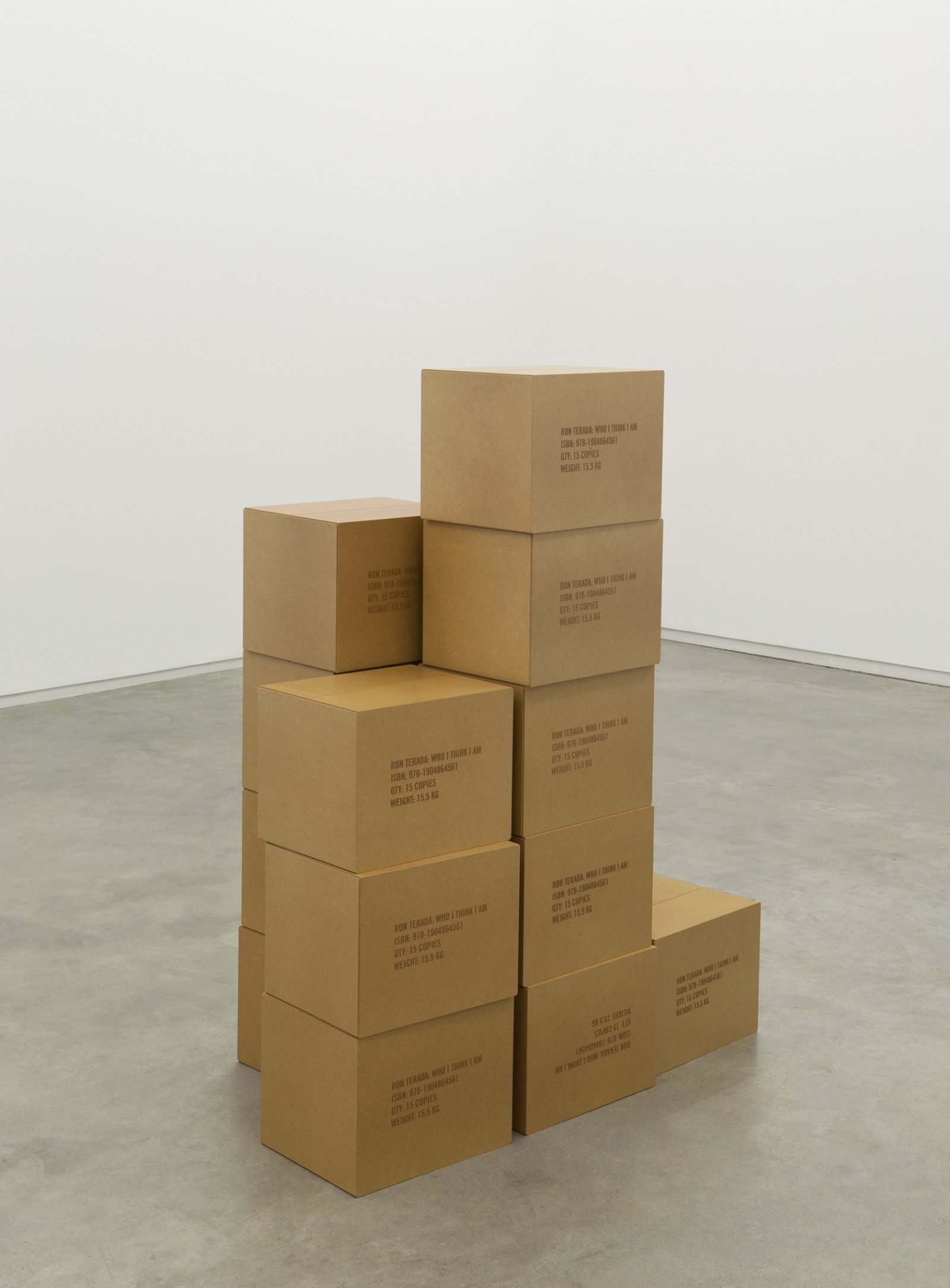Ron Terada, Who I Think I Am, 2011, 15 MDF boxes, varnish, each 10 x 13 x 11 in. (26 x 33 x 27 cm)