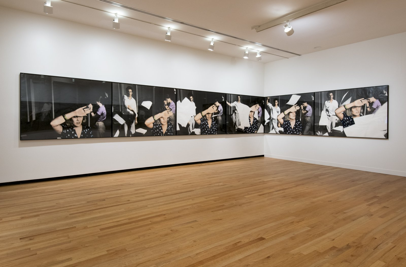 Ian Wallace, An Attack on Literature I, 1975, 12 hand-coloured silver gelatin prints, 49 x 412 in. (124 x 1047 cm). Installation view, A Literature of Images, Vancouver Art Gallery, 2012 by Ian Wallace
