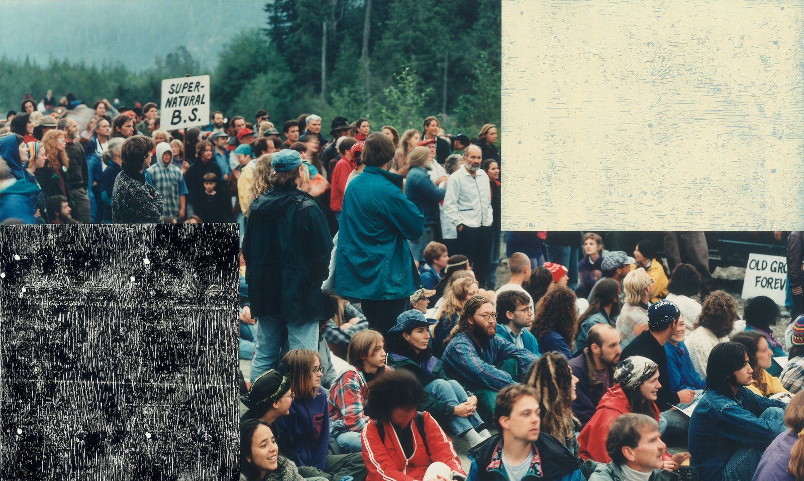 Ian Wallace, Clayoquot Protest (August 9, 1993) IV, 1993–1995, photolaminate with acrylic on canvas, 72 x 120 x 1 in. (184 x 306 x 3 cm) by Ian Wallace