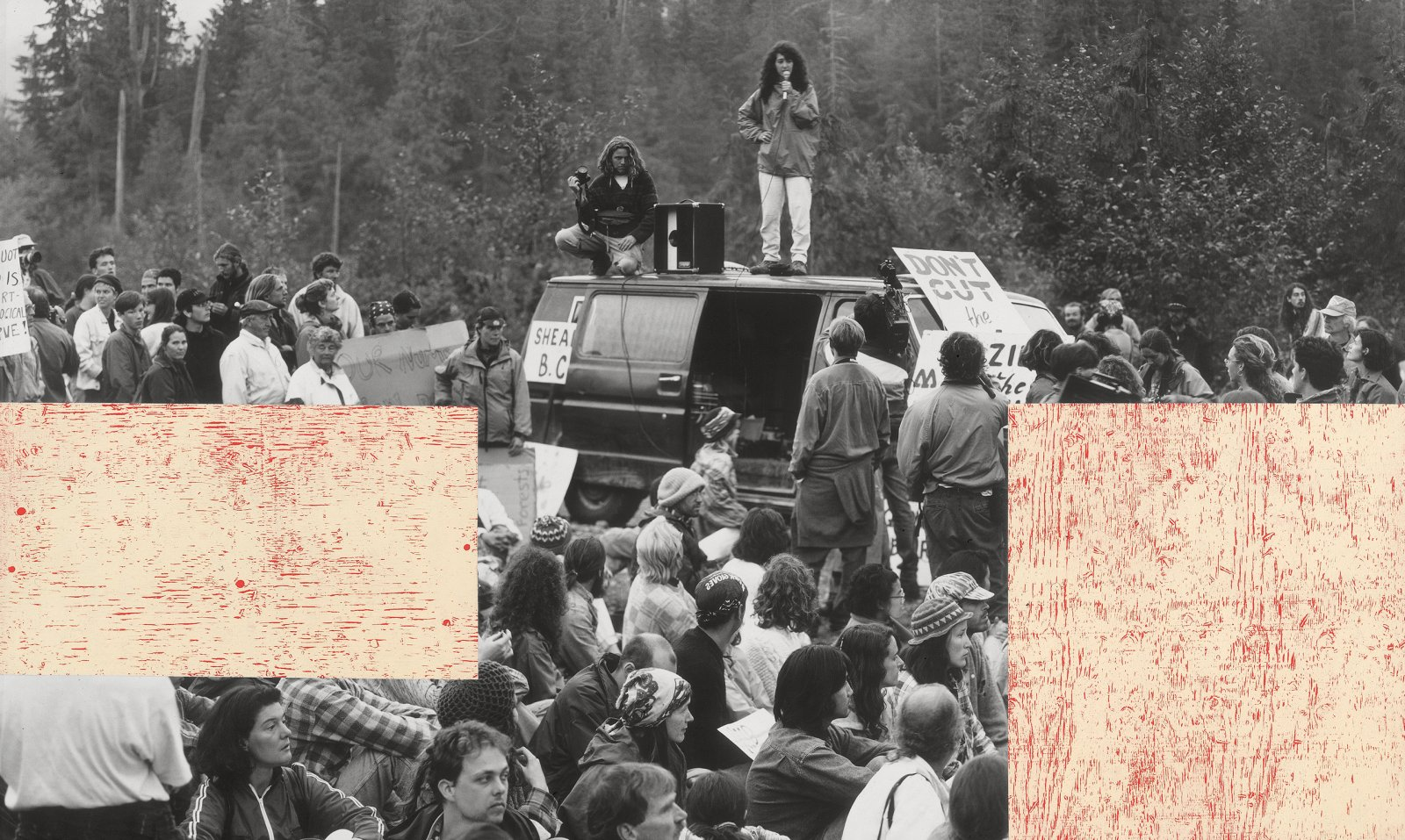 Ian Wallace, Clayoquot Protest (August 9, 1993) VII, 1993–1995, photolaminate with acrylic on canvas, 72 x 120 x 1 in. (184 x 305 x 4 cm) by Ian Wallace