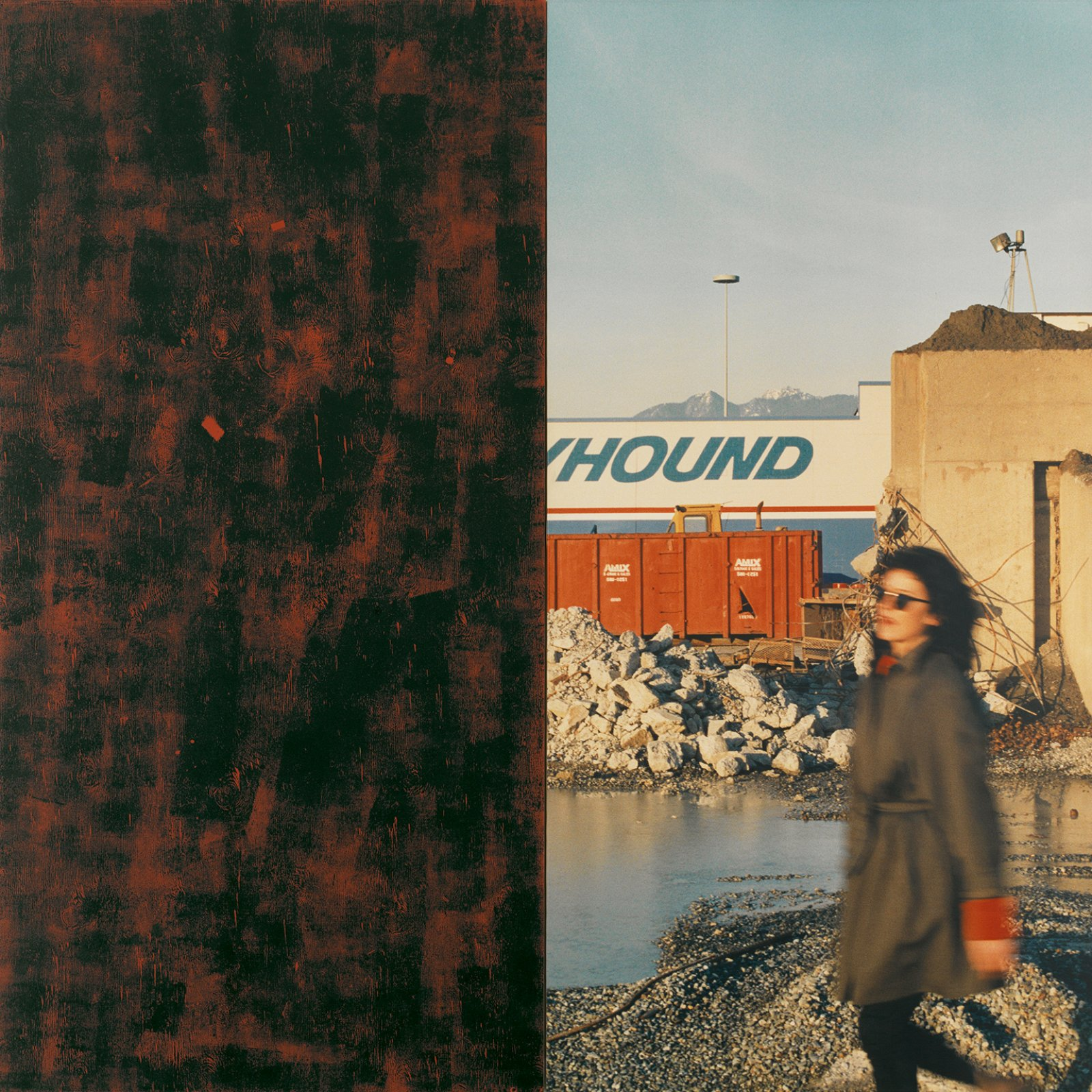 Ian Wallace, In the Street (Greyhound), 1989, photolaminate with acrylic and ink monoprint on canvas, diptych, 96 x 96 in. (244 x 244 cm). Installation view, A Literature of Images, Kunsthalle Zürich, 2008 by Ian Wallace