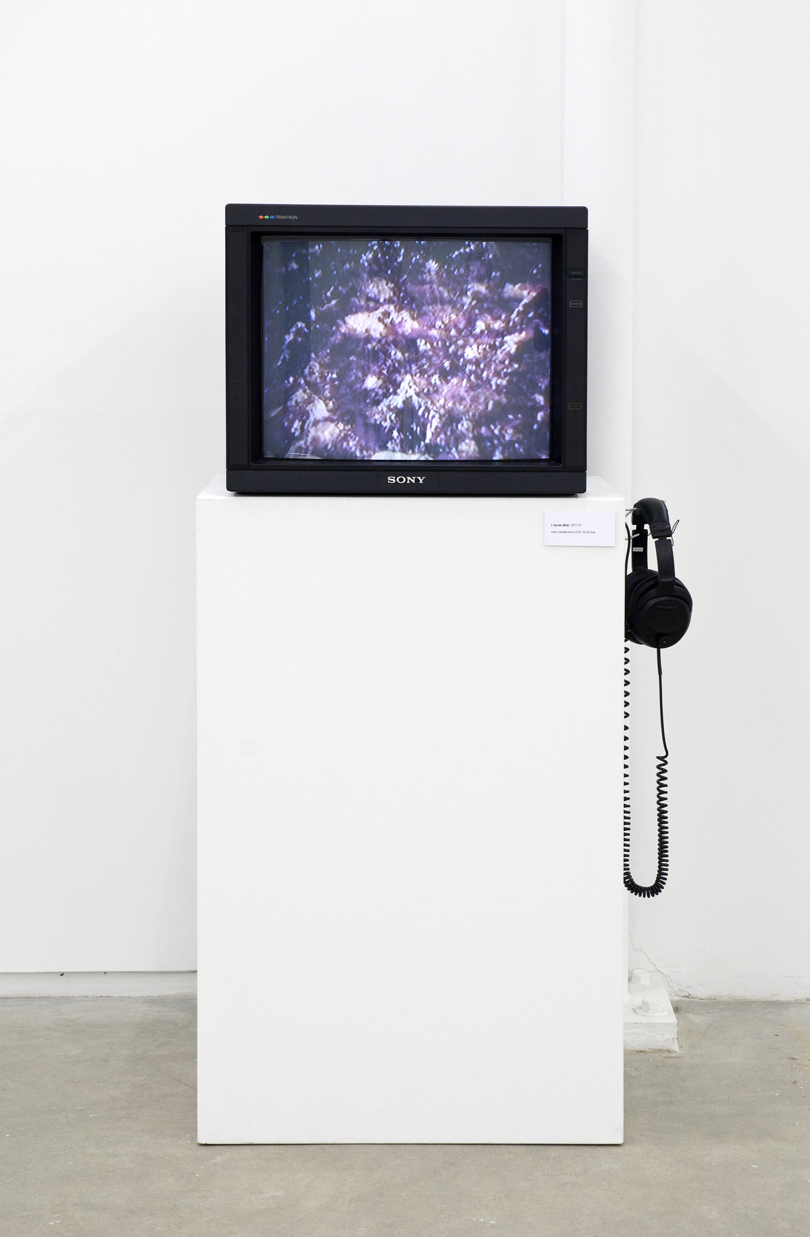 Ian Wallace, L'Après Midi, 1977–1979, 3/4 inch video transferred to DVD, 30 mintues, 25 seconds looped by Ian Wallace