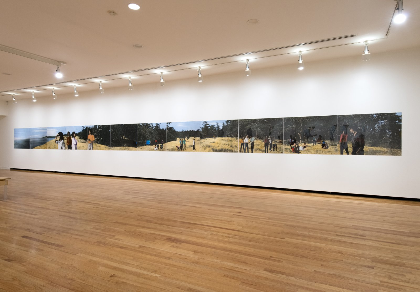 Ian Wallace, Lookout, 1979, 12 hand-coloured silver gelatin prints, 36 x 576 in. (92 x 1464 cm). Installation view, A Literature of Images, Vancouver Art Gallery, 2012 by Ian Wallace
