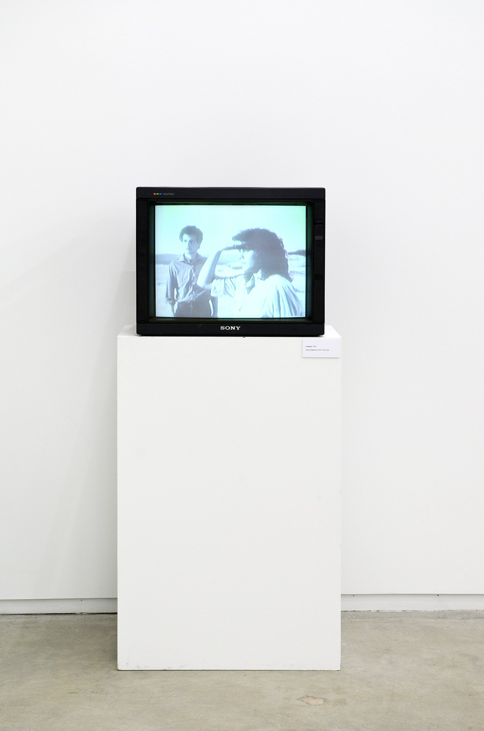 Ian Wallace, Lookout, 1979, 3/4 inch video transferred to DVD, 32 minutes, 42 seconds looped by Ian Wallace