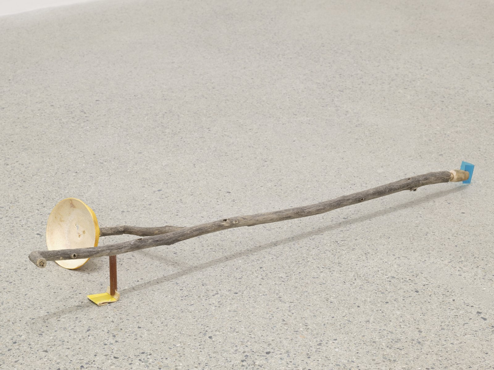 Ashes Withyman, Seagull feather floating, the smell of hot roof-tar also floating, 2019, branches, plastic, compass box cardboard, grapefruit rind, 4 x 30 x 9 in. (10 x 75 x 23 cm) by Ashes Withyman